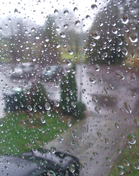 rainy day, again : (