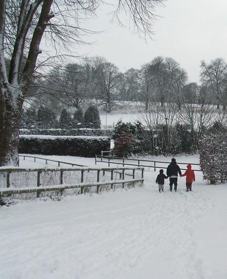 snowy_blog